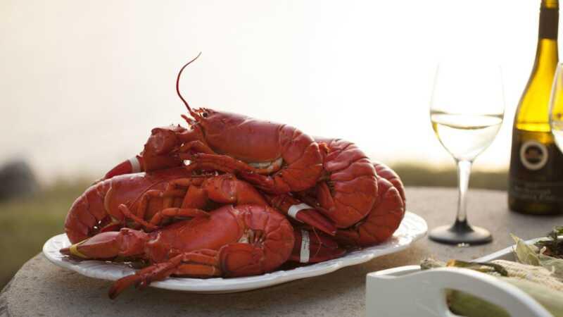 Így lehet a humánus módon főzni a homárt