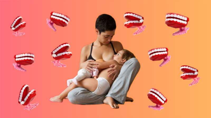 De skøreste ting, ammermødre har hørt