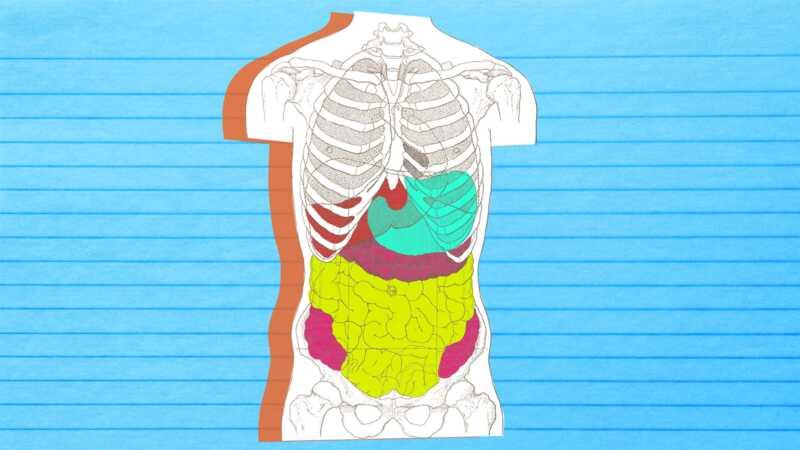 Aquests són els primers símptomes de problemes digestius en les dones