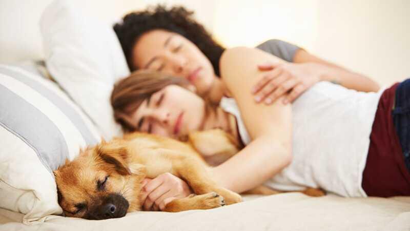 Šiek tiek papildomo miego gali rimtai pakelti savo lytinį potraukį