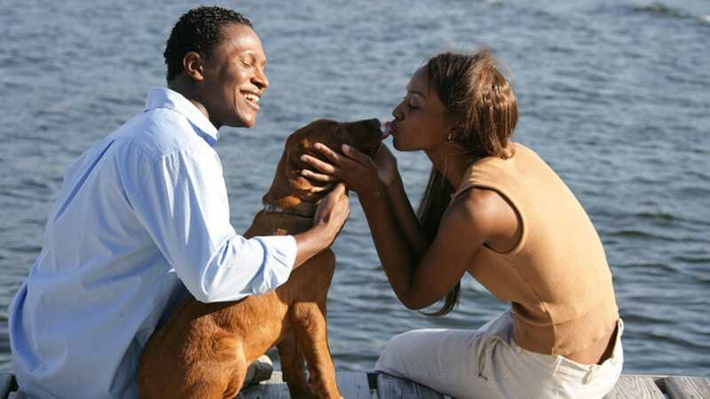 Mieli gyvūnai gali pagerinti jūsų santykius