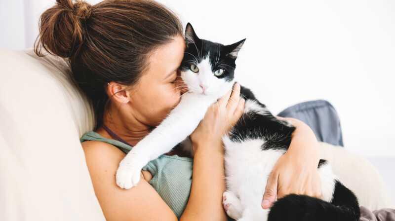 Jūs varat greznot kaķītes un nopelnīt par to (jā, patiešām)
