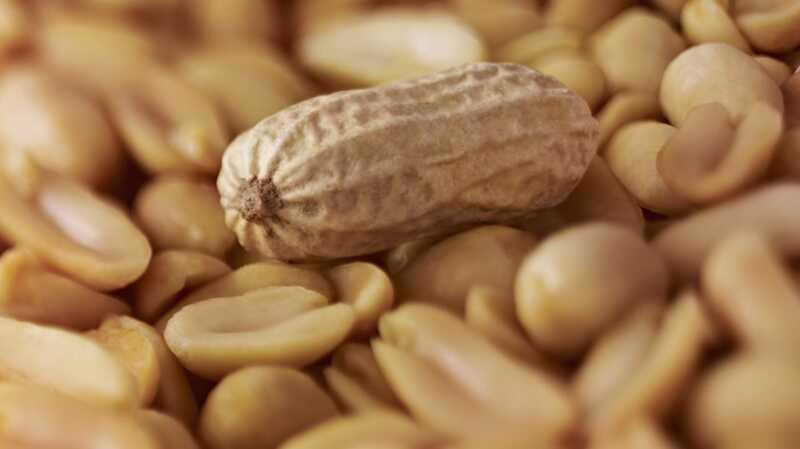 Smjernice za nove alergije za kikiriki su suprotne od onoga što nam je rečeno
