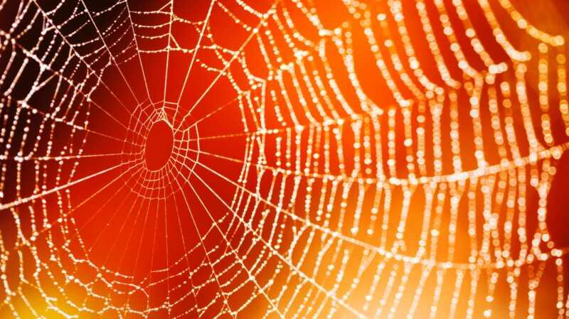 Denna spöklika Halloween spindelväv för barn är läskigt lätt att sätta ihop