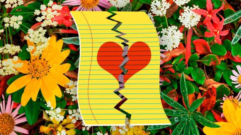 Kaj želijo 11 žensk, ki so znane, preden se razvežejo
