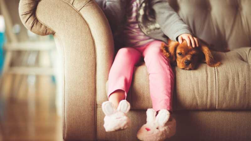 Husdyr ejerskab påvirker dine børn på flere måder end en