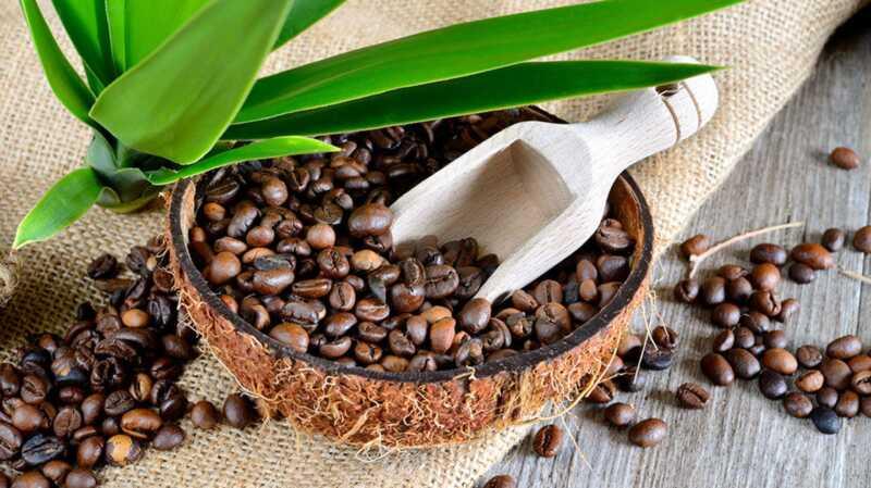 Miks me võtame kevadel kogu kookospähkli kohvi